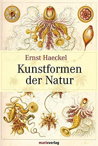 Kunstformen der Natur: Ernst Haeckel