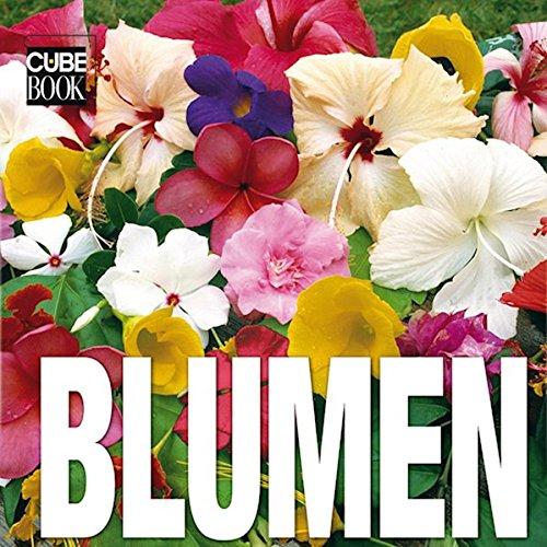 9783939128632: Cube Book. Blumen;