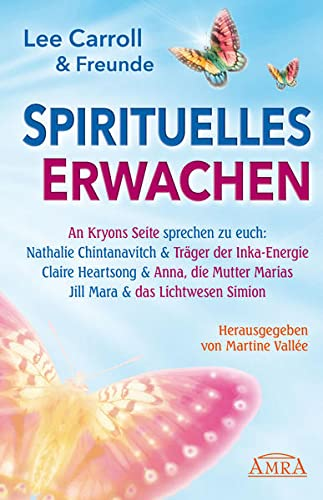 9783939373759: Spirituelles Erwachen 2013
