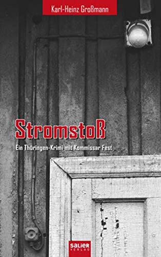 9783939611950: Stromstoß: Ein Thüringen-Krimi mit Kommissar Fest