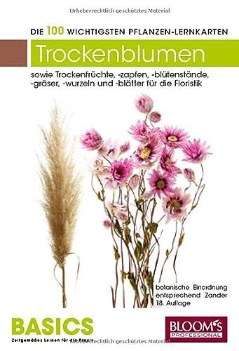 Pflanzen-Lernkarten: Die 100 wichtigsten Trockenfloralien/Früchte