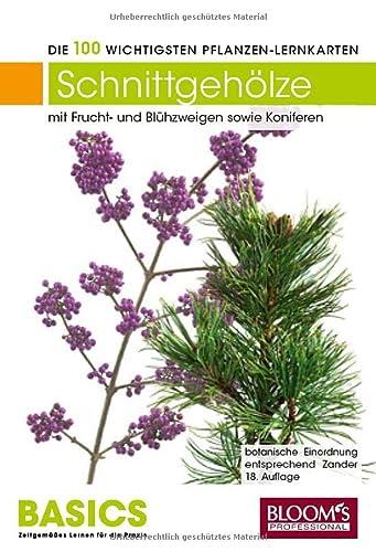 Pflanzen-Lernkarten, Die 100 wichtigsten Schnittgehölze