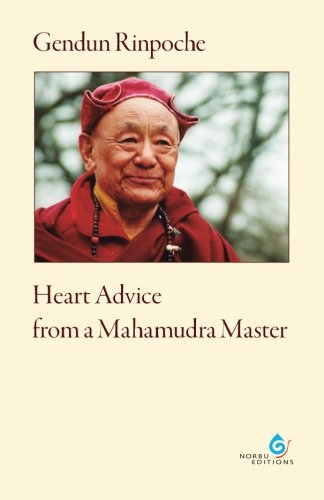 9783940269041: Heart Advice from a Mahamudra Master