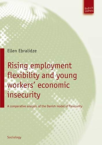 9783940755964: Rising Employment Flexibility and Young Workers' Economic Insecurity: A Comparative Analysis of the Danish Model of Flexicurity