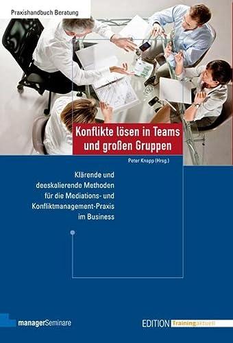 Konflikte lösen in Teams und großen Gruppen: Peter Knapp