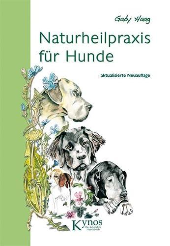 9783942335164: Naturheilpraxis für Hunde