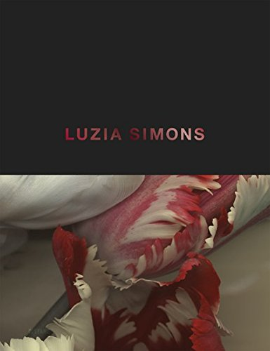 Luzia Simons (English and German Edition): Simons, Luzia