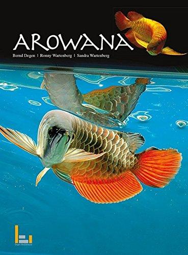 9783942596077: Asiatische Arowana