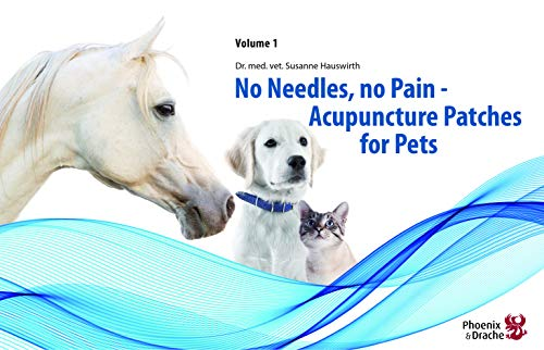 No Needles, No Pain: Dr Med Vet Susanne Hauswirth