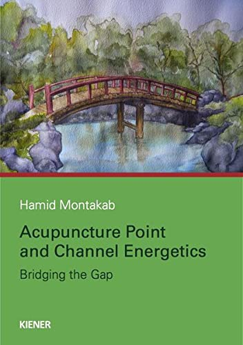 9783943324143: Acupuncture Point and Channel Energetics
