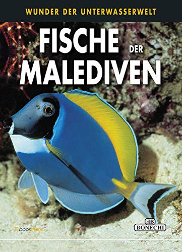 Fische der Malediven: Wunder der Unterwasserwelt (Hardback): Andrea Ghisotti