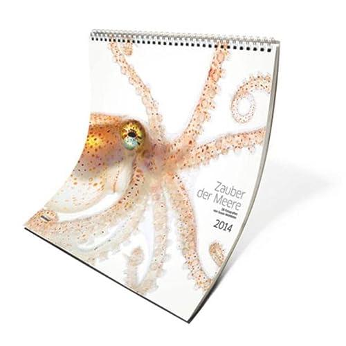 9783944222004: Zauber der Meere 2014: Tauchen Sie ein in die geheimnisvolle Unterwasserwelt der Wirbellosen. Die Fotografin Susan Middleton hat atemberaubende ... der Natur geschaffen. Zweiwöchiger Kalender