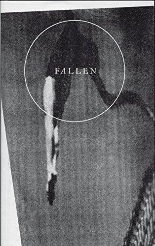 9783944334271: Fallen