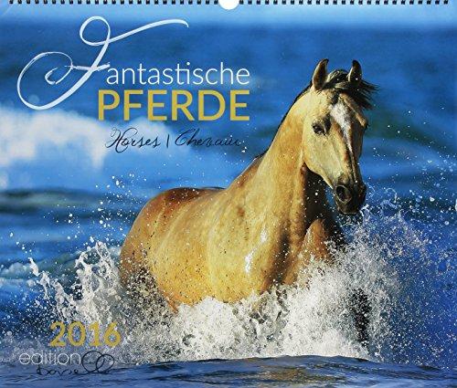 9783944588513: Fantastische Pferde 2016: Pferde verschiedener Rassen