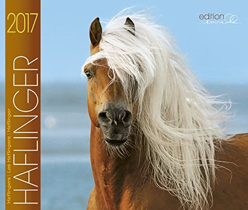 9783944588636: Haflinger Pferde 2017: Haflinger Pferde