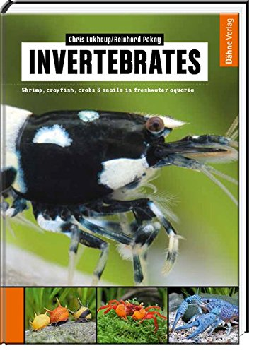 9783944821061: Invertebrates: Shrimp, crayfish, crabs & snails in freshwater aquaria