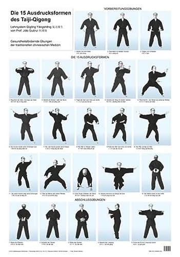9783945695265: Die 15 Ausdrucksformen des Taiji-Qigong