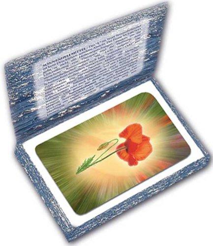 9783950224528: Kartenset Seelizin: passend zum Buch Seelizin Sonnenhell