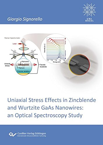 Uniaxial Stress Effects in Zincblende and Wurtzite GaAs Nanowires: Giorgio Signorello