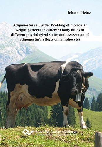 9783954047475: Adiponectin in Cattle: Profiling of molecular weight patterns in different body fluids at different physiological states and assessment of adiponectin's effects on lymphocytes