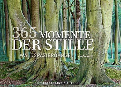 365 Momente der Stille: Waldspaziergänge. Der inspirierende Dauerkalender als Tischaufsteller....