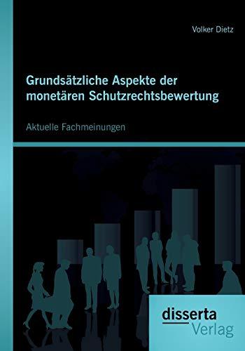 9783954252824: Grundsätzliche Aspekte der monetären Schutzrechtsbewertung: Aktuelle Fachmeinungen