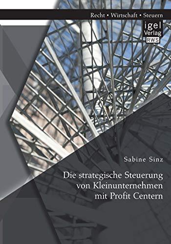Die strategische Steuerung von Kleinunternehmen mit Profit Centern: Sabine Sinz