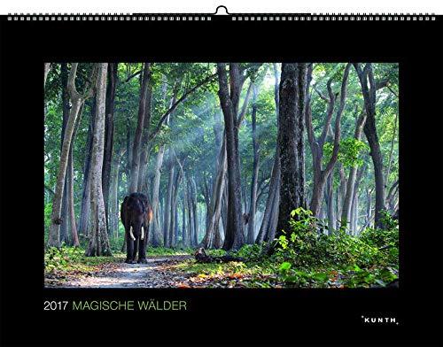 9783955042875: Magische Wälder 2017 KUNTH Wandkalender Black Edition