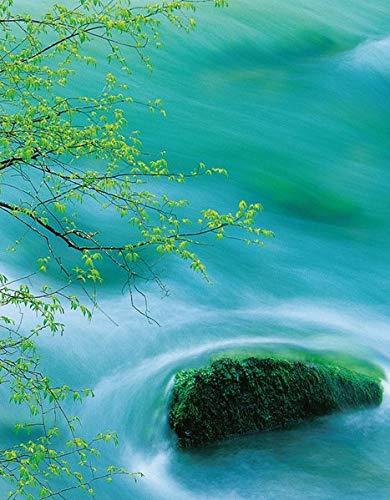 9783955703189: Flowing Water (Blank Book)