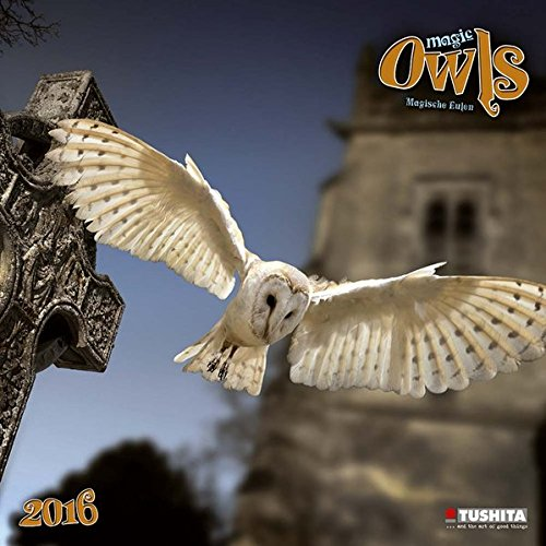 9783955707828: Magic Owls 2016