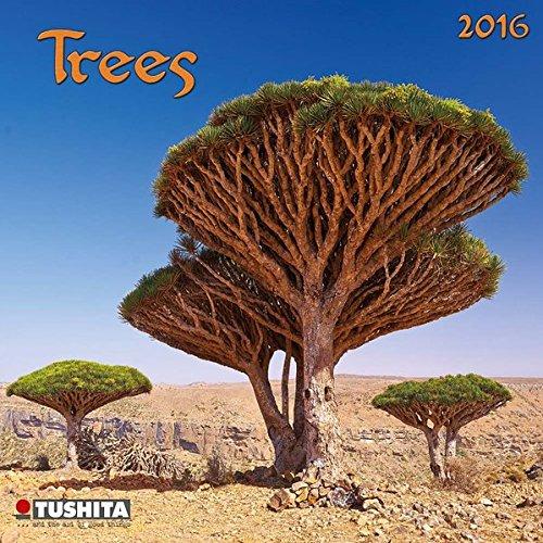 9783955709488: Trees 2016 Mini Calendar (Mini Calendars)