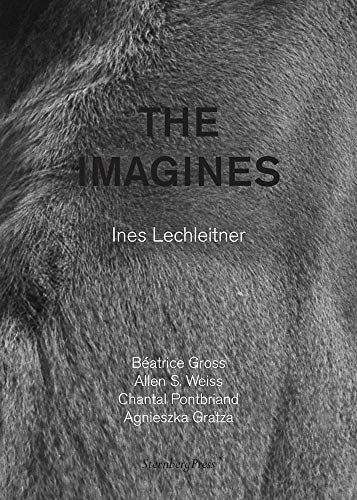 Ines Lechleitner: The Imagines: Ines Lechleitner; Ines Lechleitner [Contributor]