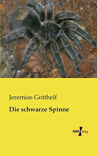 9783957380487: Die schwarze Spinne (German Edition)