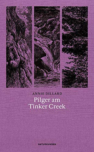 Pilger am Tinker Creek (Paperback): Annie Dillard