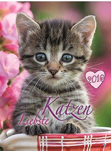 9783957740625: Liebste Katzen 2016: Classic-Kalender