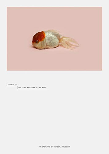 9783958293199: Robert Zhao Renhui: A Guide to the Flora and Fauna of the World: Steidl Book Award Asia 2017
