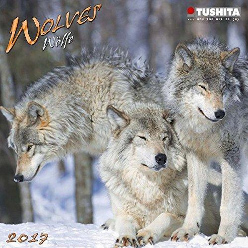 9783960131694: Wolves 2017 (Mini)