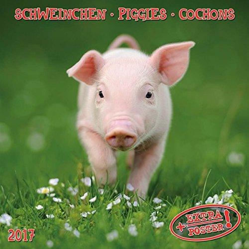 9783960131786: Piggies (171003)
