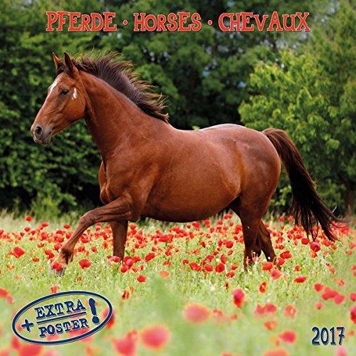 9783960131816: Pferde- Horses - Cheveaux 2017 Artwork
