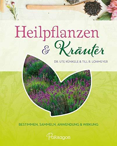 9783961280704: Heilpflanzen & Kräuter: Bestimmen, Sammeln, Anwendung und Wirkung