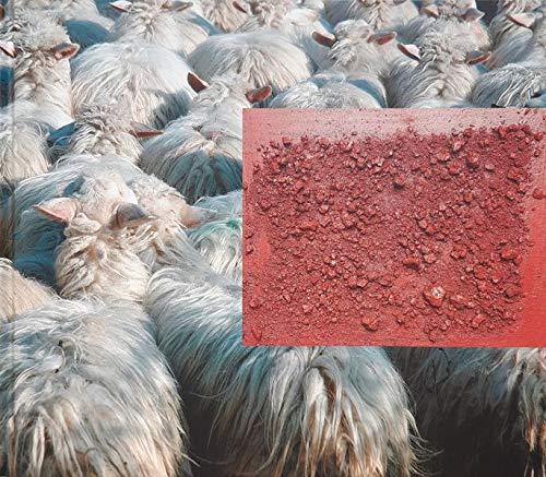 9783980551342: Baunei - Hirtenkultur in Sardinien: Künstlerisch übersetzt von Christoph Gerling und fotografisch dokumentiert von Michaela Moritz (Livre en allemand)