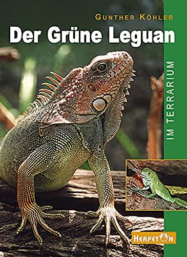 9783980621465: Der Gr�ne Leguan im Terrarium