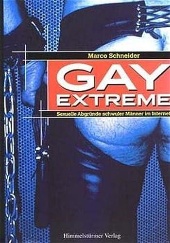 9783980624978: Gay Extreme: Sexuelle Abgr�nde schwuler M�nner im Internet