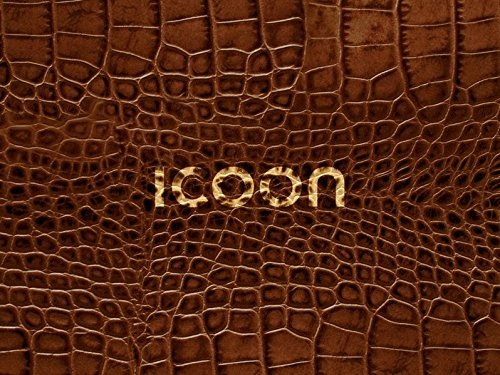 9783980965521: ICOON Cocodrilo. Diccionario visual con 2.000 iconos e imágenes. Bolsillo. Amber Press.