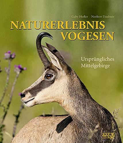 NATURERLEBNIS VOGESEN: Ursprüngliches Mittelgebirge (Hardback): Gaby Hufler, Norbert Daubner