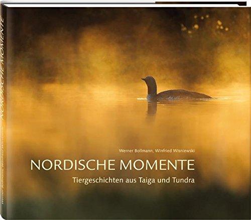 9783981294439: Nordische Momente: Tiergeschichten aus Taiga und Tundra