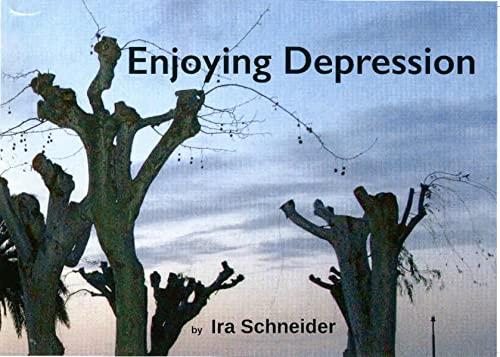 9783981315615: Enjoying Depression