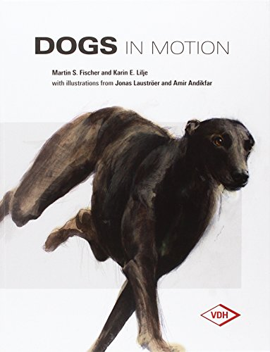 9783981433906: Dogs in Motion