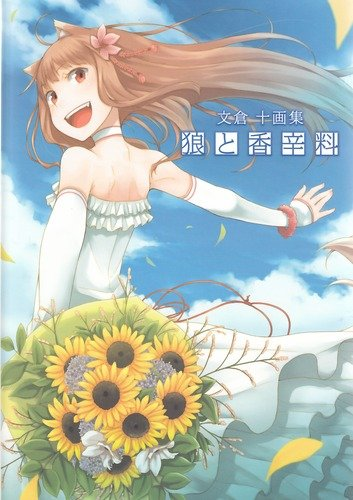 9784048706483: Spice & Wolf Illustrations Artbook