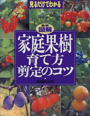 9784072253601: (It can be seen just by looking at) it can be seen just by looking at - how to grow latest illustration home fruit trees ISBN: 407225360X (1999) [Japanese Import]